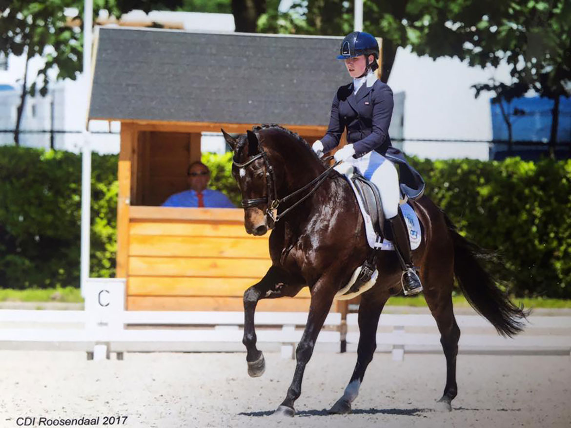 Emily and Remarkable, CDI Roosendaal 2017